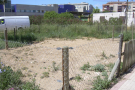 Un hombre muere en Palma en un descampado por una posible intoxicación etílica