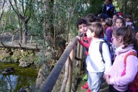 Alumnes del Ceip Mestre Guillem Galmés de Sant Llorenç del Cardessar varen visitar Natura Parc