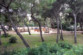 Cort invertirá 12 millones en la mejora de parques y zonas verdes