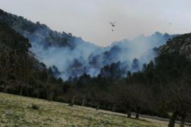 Estabilizado el incendio de Son Ordines, tras quemar 14 hectáreas