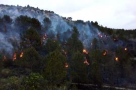 Controlado el incendio en Son Ordines tras quemar 9 hectáreas