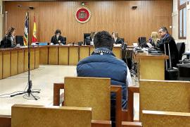 Condenado por apropiarse de 61.000 euros de la compra de 43 perros en Mallorca