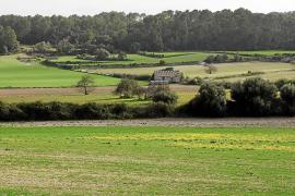 Los agricultores ven peligrar la cosecha de cereales por la falta de precipitaciones