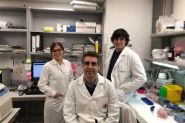 Investigación contra el cáncer
