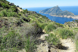 El camino entre ses Basses y la Trapa se integra en la Ruta de Pedra en Sec