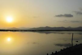 plasticitat i transparència a la posta de sol .