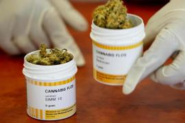 El cannabis medicinal, legal en Portugal y sin comercializarse