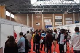 La II Feria de Empleo y Emprendimiento de Calvià termina con un total de 1.425 entrevistas de trabajo