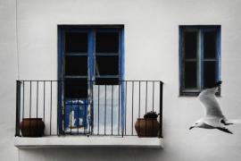 Gavina i balconada