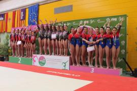 Palma y Grech, podio en la Liga Iberdrola de gimnasia artística