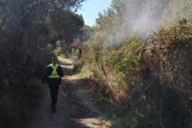 Incendio forestal en Sóller