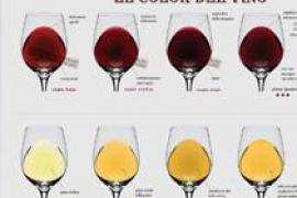 Iniciación a la cata de vino en Manacor de la Vall