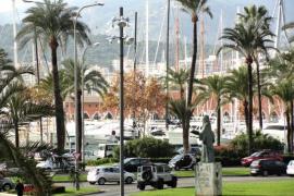 Glamorosa Palma