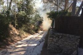Declarado un incendio forestal en Ibiza