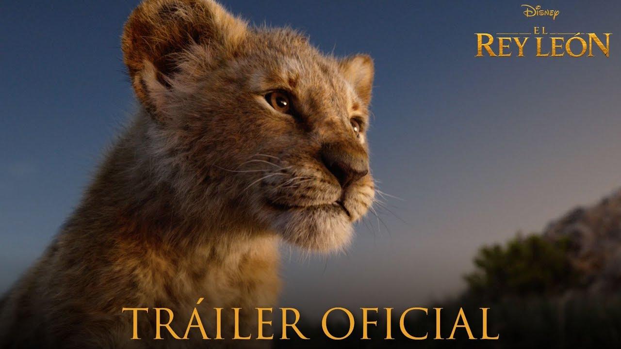 Las imágenes del regreso de un 'Rey León' más real y emocionante que nunca