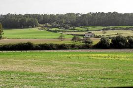 Unió de Pagesos pide convocar la Mesa de la Sequía para analizar las pérdidas del cereal
