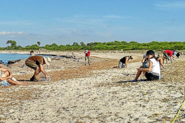 La presencia de plástico es mayor en las playas vírgenes que en las masificadas