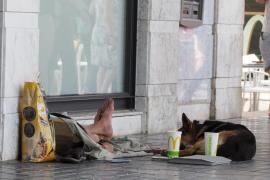 Denuncian al Ajuntament de Palma por ignorar casos de explotación animal