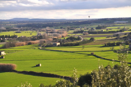 A vista de Pajaro