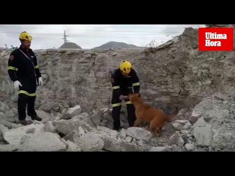 La patrulla canina de los bomberos al rescate