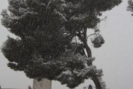 En la vida aunque llueva o nieve siempre hay que persistir, Siempre estar de pie y nunca dejarnos caer.