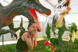 Dinosaurs Tour, una exposición paleontológica