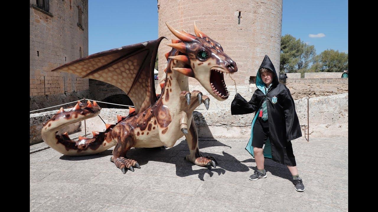 La magia de Harry Potter llega a Palma