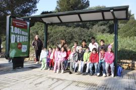 Veinte alumnos de Cales de Mallorca se quedaron ayer sin transporte escolar