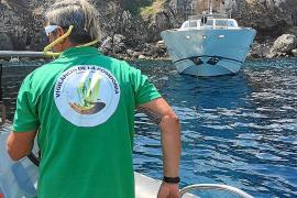Cinco embarcaciones controlarán los fondeos sobre posidonia este verano