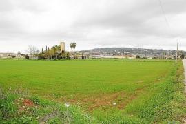 Manacor impulsará una 'ecociudad' en los terrenos urbanizables de s'Hort d'en Roig