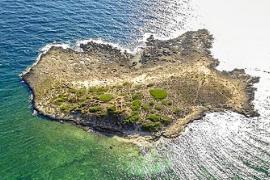 El islote na Guardis volverá a ser excavado tras el éxito de sa Galera