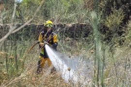 El verano será «seco y preocupante» por el riesgo de incendios