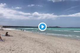 Terraferida censura la celebración de una boda en las dunas de es Trenc