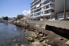 Emaya retira más de 500 toneladas de posidonia en Cala Gamba