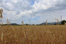 Mayo de 2019 en Baleares, un mes frío y con menos lluvias de lo habitual