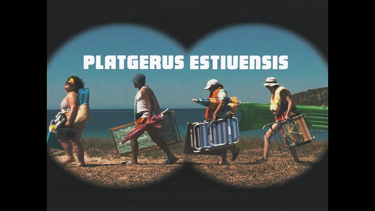 Lo que hay que hacer para no convertirse en un 'platgerus estiuensis'