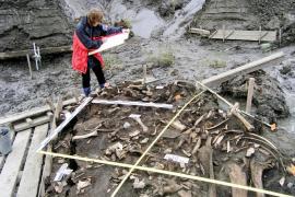 Descubren un nuevo grupo humano que vivió en Siberia en la Edad de Hielo