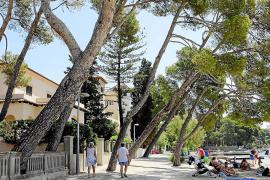 Pollença adelanta por primera vez a Muro y Can Picafort en número de plazas turísticas