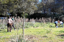 GOB y cazadores diseñan el primer plan de usos para la Comuna de Lloret