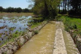 Emaya adjudicará en breve el proyecto que ayudará a mejorar el agua del grifo