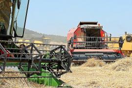 Inquietud en el sector agrario de Mallorca por el acuerdo entre la UE y Mercosur