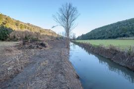 Denuncian ante la Comisión Europea la «destrucción» del torrente de na Borges
