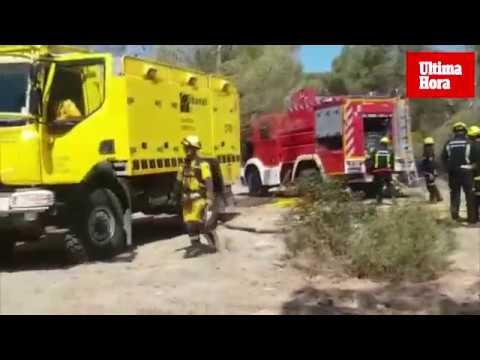Extinguido el incendio forestal en Calvià