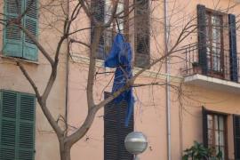 ¿Fantasma en un árbol?