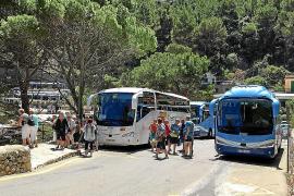 La venta de excursiones turísticas baja más de un 50 % en cinco años en Baleares
