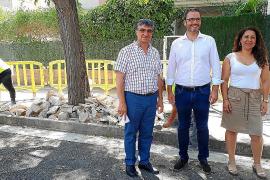 Plan de choque contra las malas hierbas en Palma