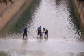 El GOB denuncia la utilización de fitosanitarios en el agua de la Riera