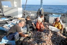 Galicia, Canarias y Cataluña copiarán el modelo de pesca turística de Baleares