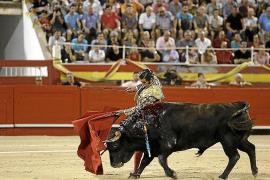 Cort inspeccionará al detalle que la corrida de toros cumple la ley