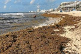 Cadenas mallorquinas venden hoteles en la Isla para afrontar sus inversiones en México